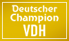 Deutscher Champion